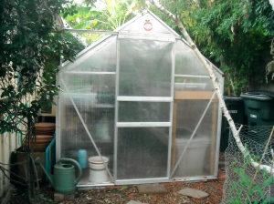 We have a greenhouse.