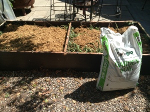 Beer grains are good for raised beds!